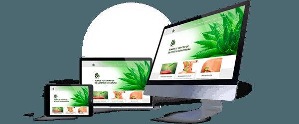 Página web de Aloe Laser