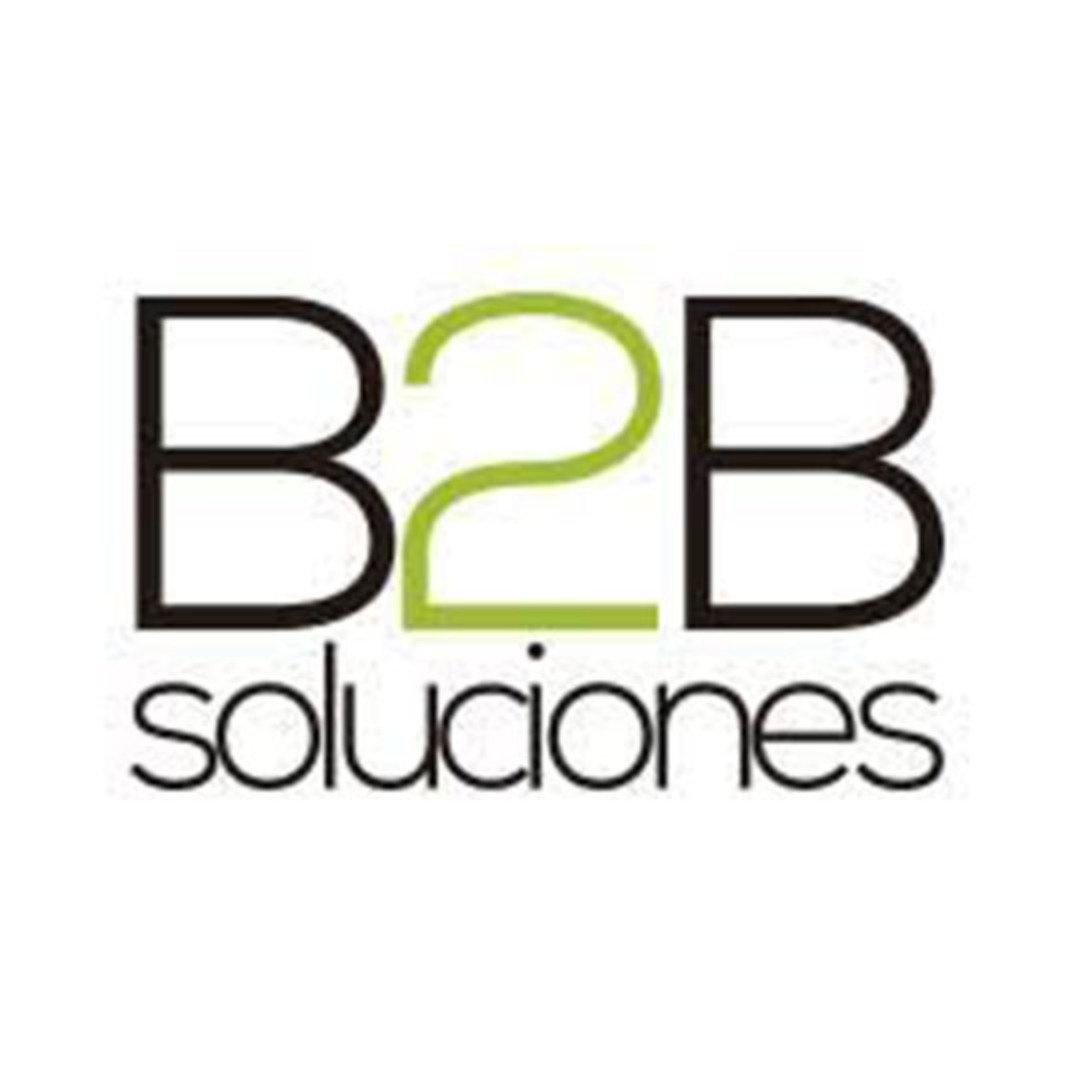 B2B Soluciones